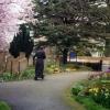 Church yard - spring-1995