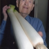 2008_alf_hall_with _leeks
