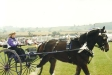 Agricultural Show 2002
