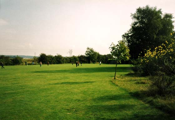 Walter D'auncourt School Grounds 1968