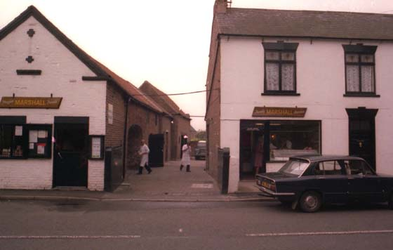 Butchers and Frozen Food Shop